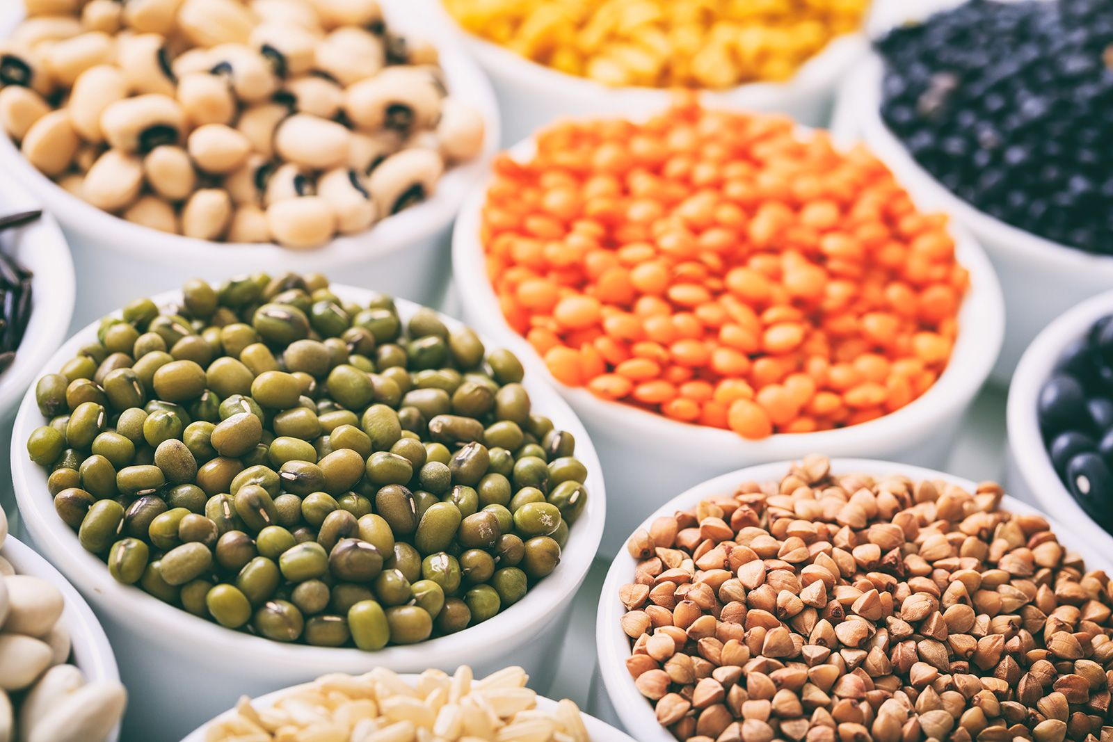LECTINS: BENEFICIAL OR HARMFUL?
